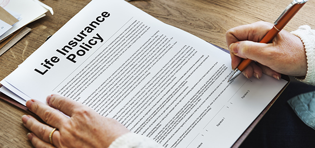 How to Take a Loan Against Your Life Insurance Policy ...