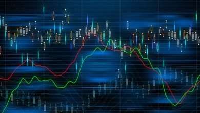 Photo of How to Choose the Best Broker for Forex Auto Trading